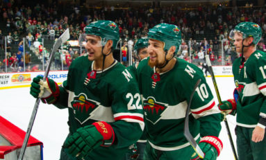 Minnesota Wild Healthy with Playoff Hopes