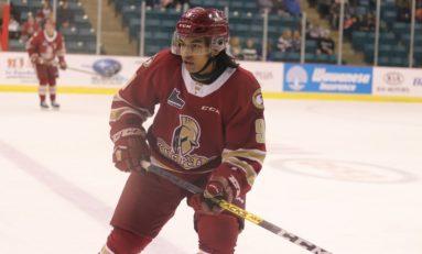 Noah Delemont - 2020 NHL Draft Prospect Profile