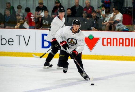Olle Alsing Ottawa Senators