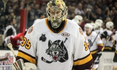 Chicago Wolves Season In Review