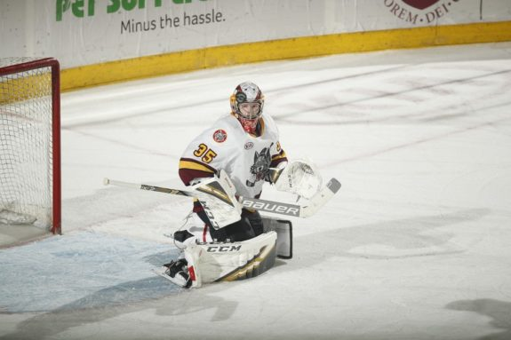 Oscar Dansk Chicago Wolves