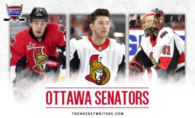 Ottawa Senators 2018-19 Season Preview