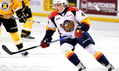 6 Erie Otters Shooting for the NHL