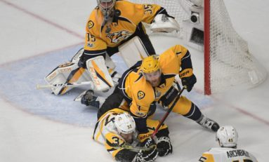 Predators: What's Wrong with the Defense?