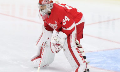 Up Next for the Red Wings: Moving a Goalie
