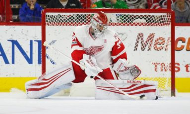 How the Red Wings Should Proceed with Mrazek