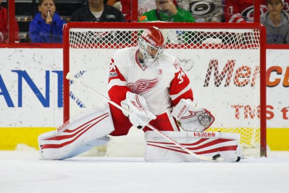Goaltender Petr Mrazek of the Detroit Red Wings.