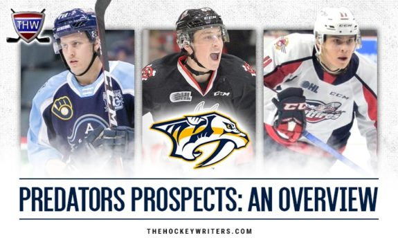 Predators Prospects