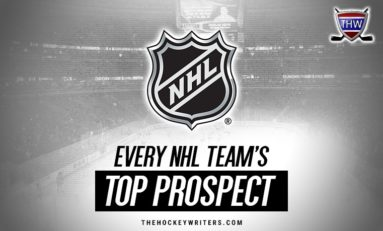 Every NHL Team's Top Prospect