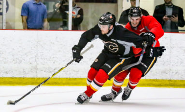 Stockton Heat Could Ignite the Flames
