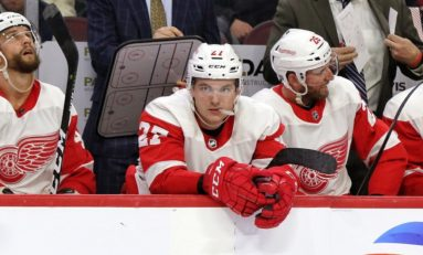 The Grind Line: What's Missing in the Red Wings Rebuild?
