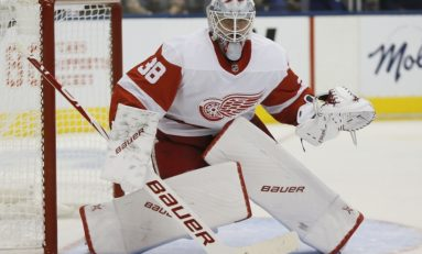 Red Wings' Filip Larsson Honing Skills in ECHL