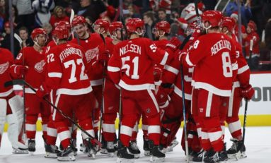 Who Is the Red Wings' Second-Best Player?