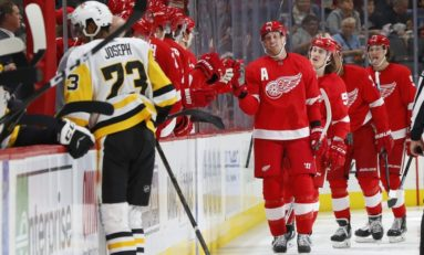 The Grind Line: Red Wings' Top Line Creating Sustainable Energy?