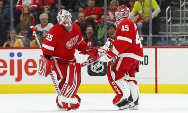 Red Wings Have Plenty of Goalie Options for 2020-21