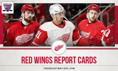 Red Wings' 2019-20 Report Cards
