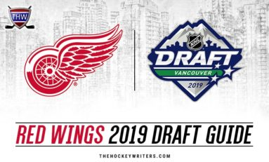 Red Wings 2019 Draft Guide: Targets, Strategy & More