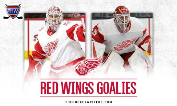 Jimmy Howard and Jonathan Bernier of the Detroit Red Wings.
