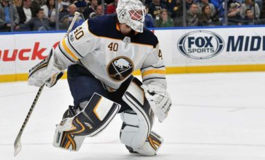 Robin Lehner - Is He Cut out to Be an NHL Starter?