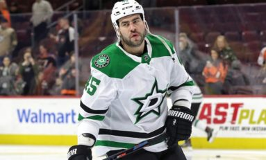 Roman Polak's Future with the Stars