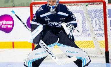 Samuel Hlavaj - 2020 NHL Draft Prospect Profile