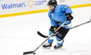 Beauts' Shureb Talks Hockey for Smaller Kids