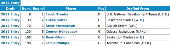 Jets 2012 NHL Entry Draft selections