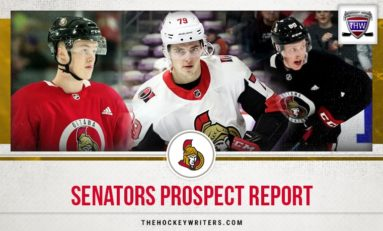 Senators Prospect Report - First Quarter