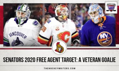 Senators' 2020 Free Agent Target: A Veteran Goalie
