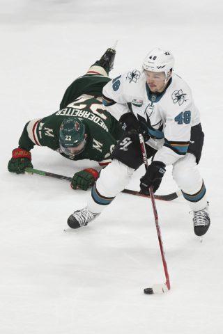 San Jose Sharks' Tomas Hertl Minnesota Wild's Nino Niederreiter