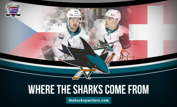 Where the San Jose Sharks Come From Tomas Hertl and Timo Meier Czech Republic and Switzlerand