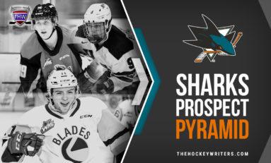 San Jose Sharks Prospect Pyramid
