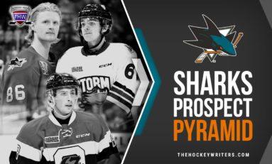 San Jose Sharks' Prospect Pyramid