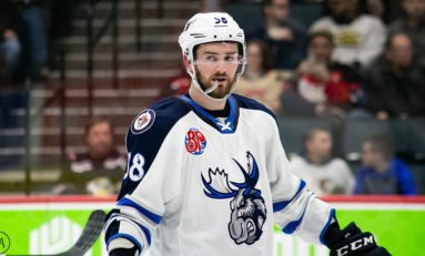 Manitoba Moose January in Review