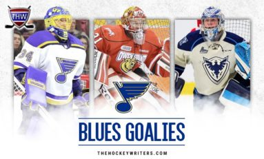 View From the Crease: St. Louis Blues Goaltending