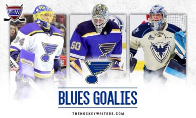 Blues Goaltending: View From the Crease (March Update)