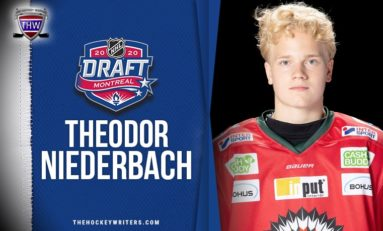 "Theodor Niederbach Has a ""Swede"" Opportunity with the Red Wings"