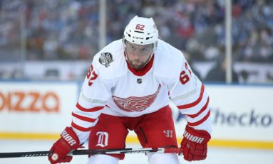 Red Wings Sign Vanek & Bernier