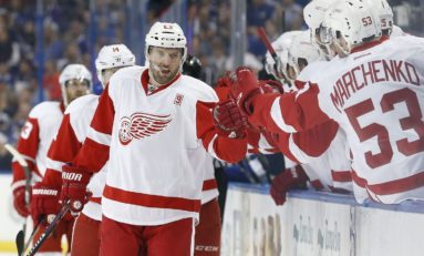 Should Red Wings Trade Vanek Regardless?