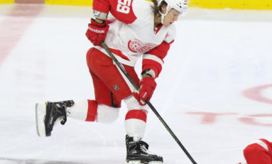 Bertuzzi Putting It Together for Red Wings