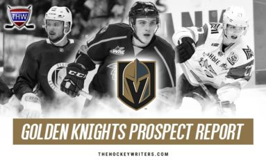 Vegas Golden Knights Prospects: Season In Review
