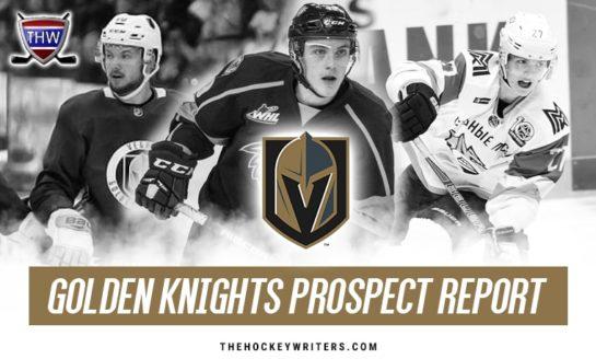 Vegas Golden Knights Prospects: Season In Review