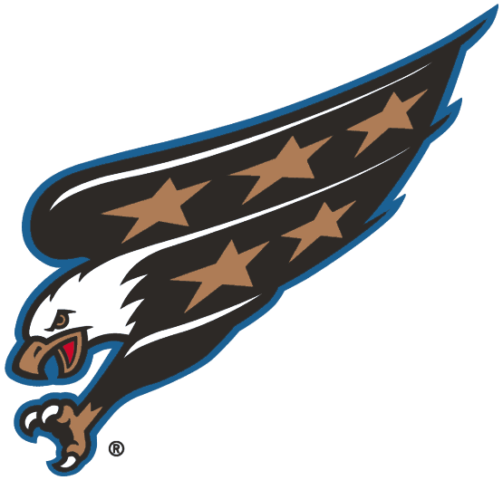Washington Capitals 1995-2007 Primary Logo
