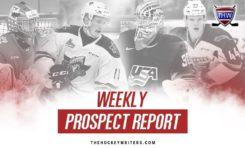 Weekly Prospect Report: Robertson, Broberg, Bedard, Fantilli & More