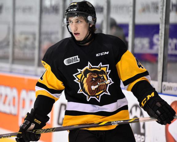 Will Bitten, Hamilton Bulldogs, OHL