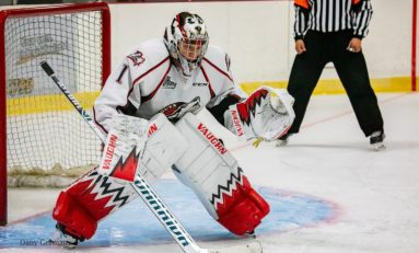 Sharks Goalie Prospects - Korenar, Shortridge, Melnichuk & Emond