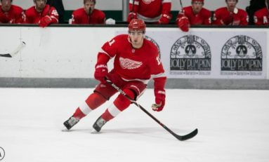 The Grind Line: Red Wings 2019-20 Breakout Candidates