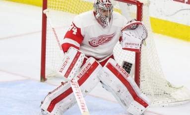 Red Wings Should Prioritize Goaltending Depth