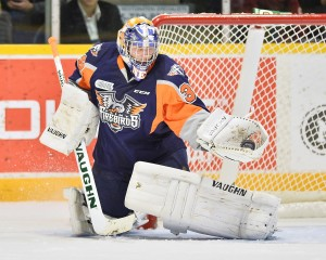 Alex Nedeljkovic, OHL, Niagara IceDogs, Flint Firebirds