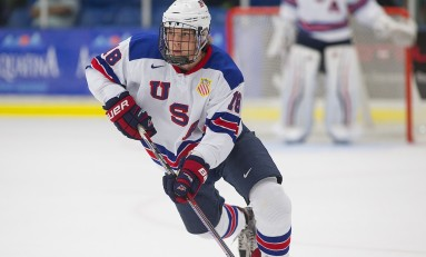 Ryan Lindgren – The Next Ones: NHL 2016 Draft Prospect Profile